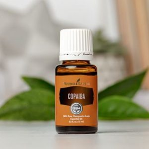 copaiba young living by keki holistics